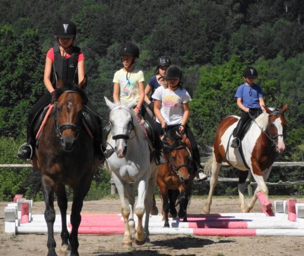 zielona-szkola-w-gorach-warsztaty-sztuki-koni